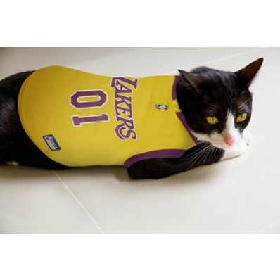 kobe jersey for cats