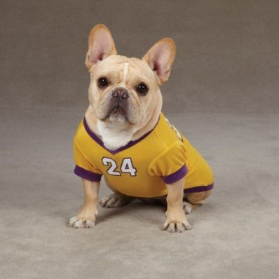 kobe jersey for puppies